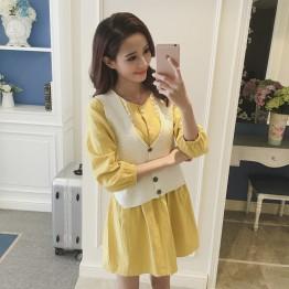 TE1098YHFS Korean fashion autumn dress with knitting vest