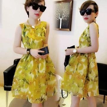 TE8119LYWL Fashion organza print sleeveless bubble dress