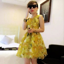 TE8119LYWL Fashion organza print sleeveless bubble dress